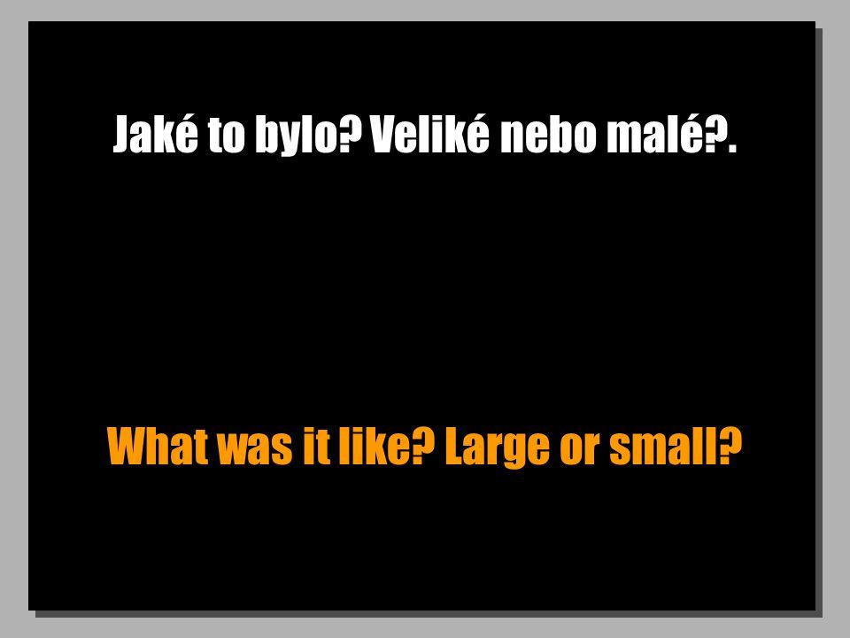Jaké to bylo Veliké nebo malé . What was it like Large or small
