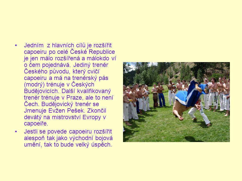 Jedním z hlavních cílů je rozšířit capoeiru po celé České Republice je jen málo rozšířená a málokdo ví o čem pojednává.