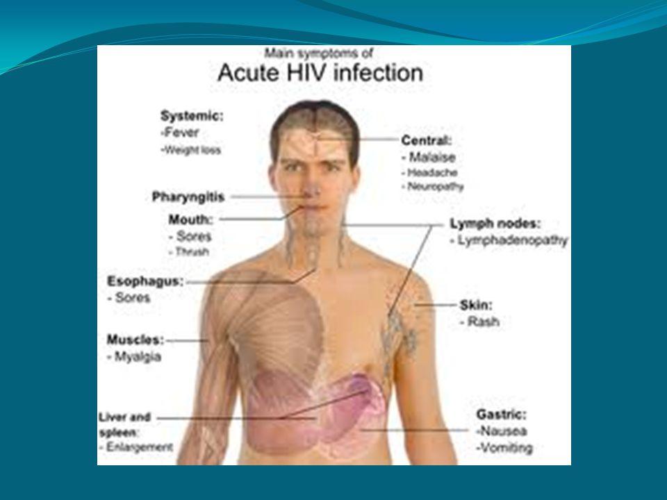 Alergická reakce Alergická reakce má v podstatě dvě podoby – akutní a chronickou.