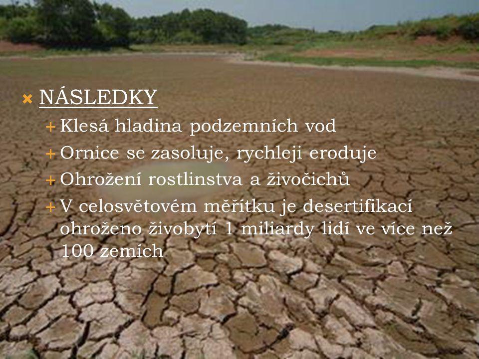  NÁSLEDKY  Klesá hladina podzemních vod  Ornice se zasoluje, rychleji eroduje  Ohrožení rostlinstva a živočichů  V celosvětovém měřítku je desert