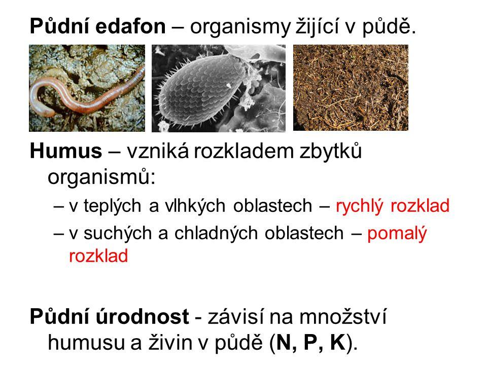 Půdní edafon – organismy žijící v půdě. Humus – vzniká rozkladem zbytků organismů: –v teplých a vlhkých oblastech – rychlý rozklad –v suchých a chladn