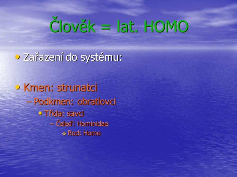 Člověk = lat. HOMO Zařazení do systému: Kmen: strunatci –P–P–P–Podkmen: obratlovci Třída: savci –Č–Č–Č–Čeleď: Hominidae RRRRod: Homo