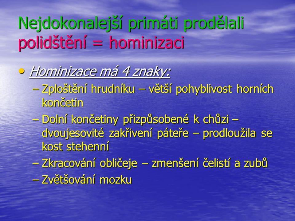 Nejdokonalejší primáti prodělali polidštění = hominizaci Hominizace má 4 znaky: –Z–Z–Z–Zploštění hrudníku – větší pohyblivost horních končetin –D–D–D–