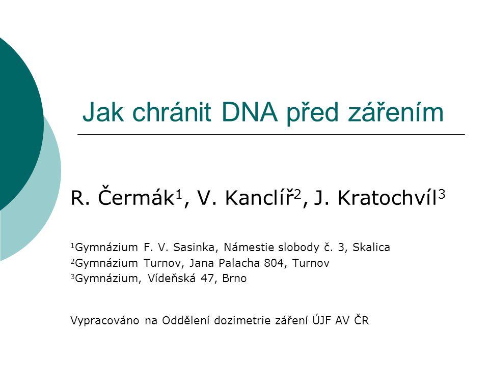 Jak chránit DNA před zářením R. Čermák 1, V. Kanclíř 2, J.