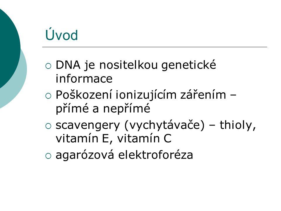 Úvod  DNA je nositelkou genetické informace  Poškození ionizujícím zářením – přímé a nepřímé  scavengery (vychytávače) – thioly, vitamín E, vitamín C  agarózová elektroforéza