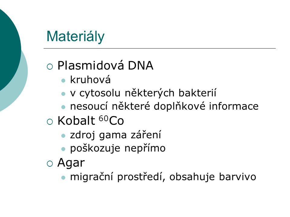 Materiály  Plasmidová DNA kruhová v cytosolu některých bakterií nesoucí některé doplňkové informace  Kobalt 60 Co zdroj gama záření poškozuje nepřímo  Agar migrační prostředí, obsahuje barvivo