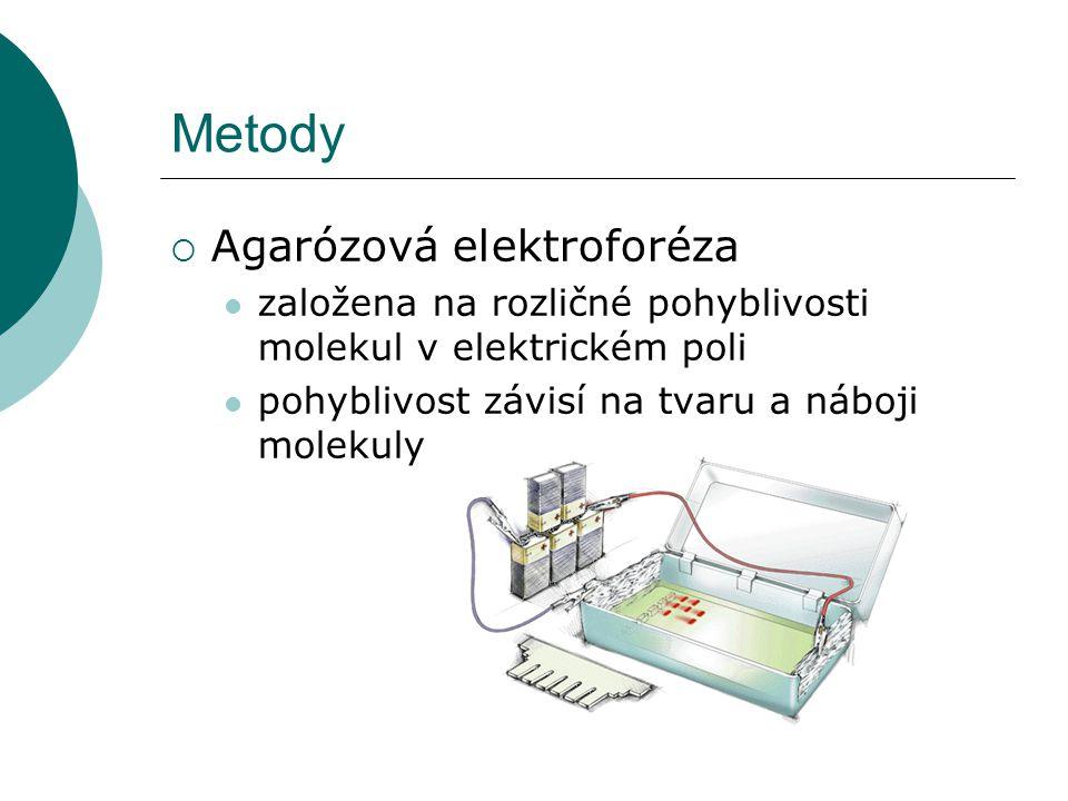 Metody  Agarózová elektroforéza založena na rozličné pohyblivosti molekul v elektrickém poli pohyblivost závisí na tvaru a náboji molekuly