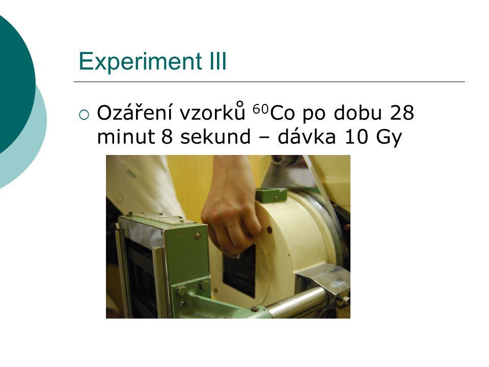 Experiment III  Ozáření vzorků 60 Co po dobu 28 minut 8 sekund – dávka 10 Gy