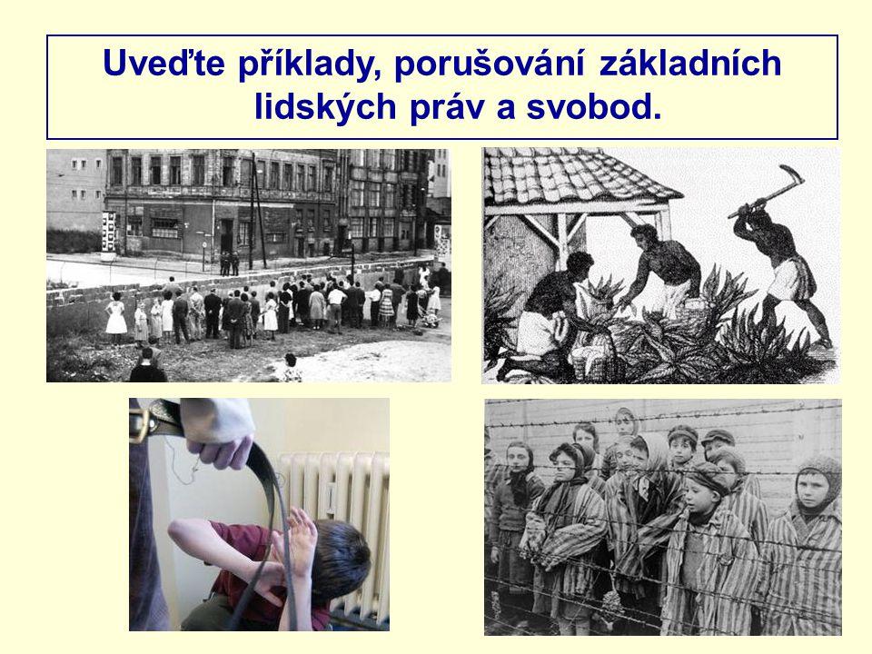 Jak se nazývá právní dokument, který zaručuje dodržování lidských práv v ČR.