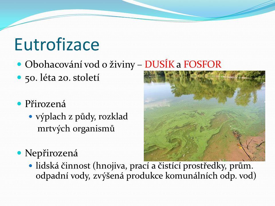 Eutrofizace Obohacování vod o živiny – DUSÍK a FOSFOR 50.