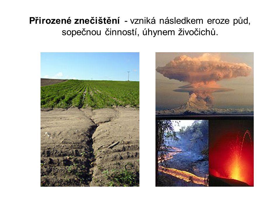 Přirozené znečištění - vzniká následkem eroze půd, sopečnou činností, úhynem živočichů.