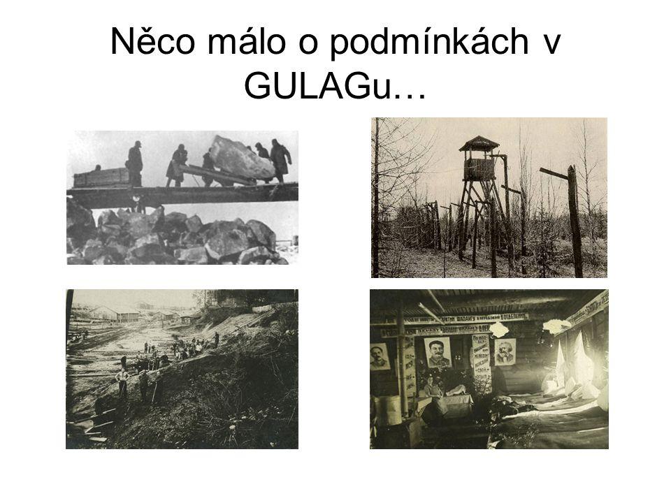 Zdroje Solženicyn, A.