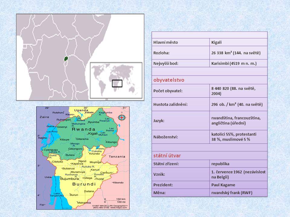 Hutuiské obavy Po prvních dnech vyvražďování Tutsiů došlo k situaci, kdy velké procento Hutuů emigrovalo do sousedních států ze strachu z tutsijské odvety V uprchlických táborech došlo k rozšíření cholery Do Rwandy se začali vracet až po několika měsících, v listopadu ze Zairu a v prosinci z Tanzanie Po prvních dnech vyvražďování Tutsiů došlo k situaci, kdy velké procento Hutuů emigrovalo do sousedních států ze strachu z tutsijské odvety V uprchlických táborech došlo k rozšíření cholery Do Rwandy se začali vracet až po několika měsících, v listopadu ze Zairu a v prosinci z Tanzanie