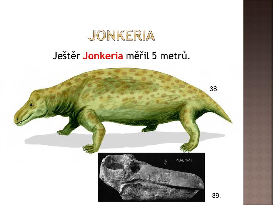 Ještěr Jonkeria měřil 5 metrů. 38. 39.