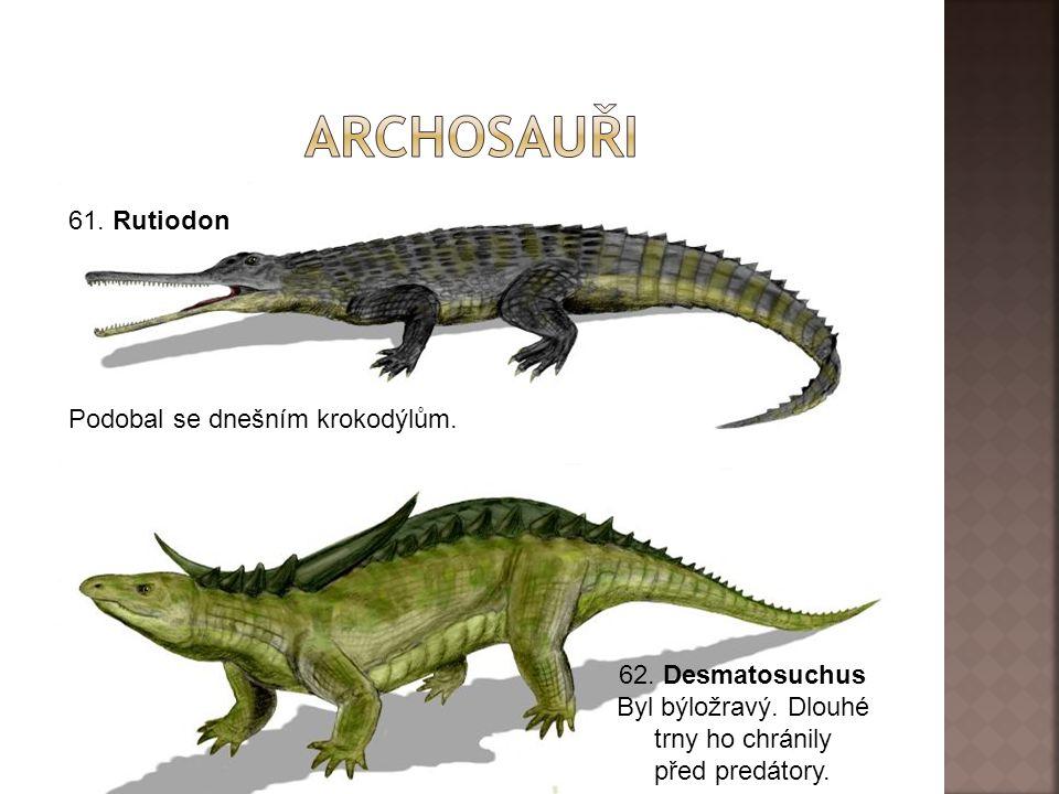61.Rutiodon 62. Desmatosuchus Byl býložravý. Dlouhé trny ho chránily před predátory.
