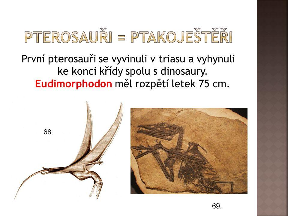 První pterosauři se vyvinuli v triasu a vyhynuli ke konci křídy spolu s dinosaury.