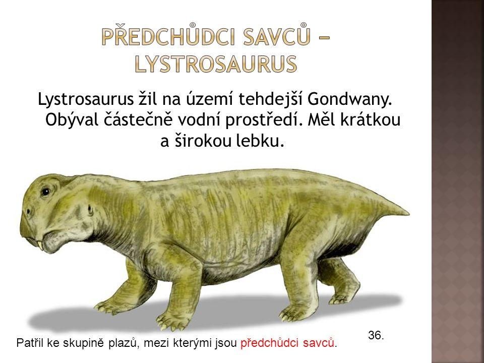 Lystrosaurus žil na území tehdejší Gondwany.Obýval částečně vodní prostředí.