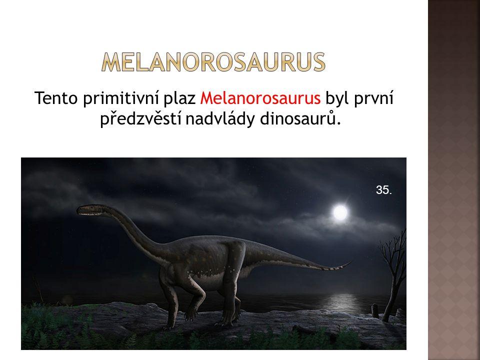 Tento primitivní plaz Melanorosaurus byl první předzvěstí nadvlády dinosaurů. 35.