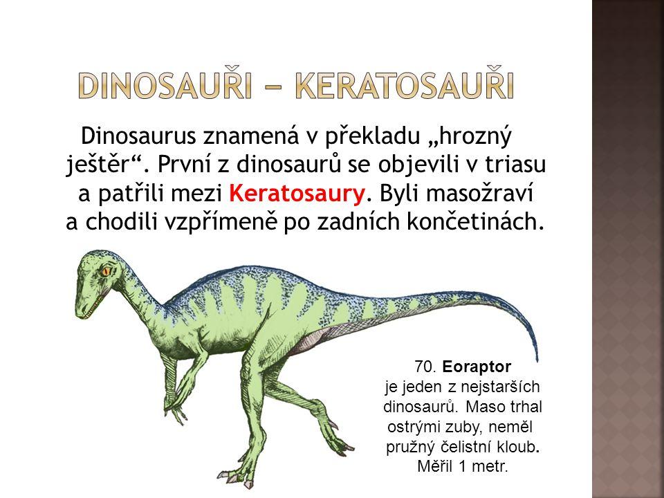 """Dinosaurus znamená v překladu """"hrozný ještěr ."""