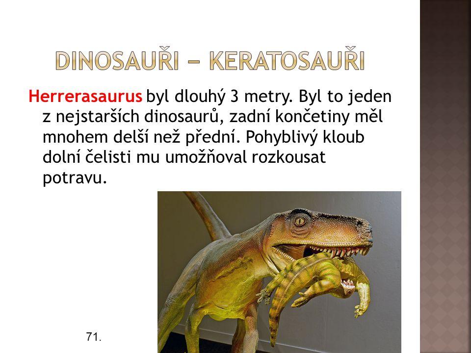 Herrerasaurus byl dlouhý 3 metry.