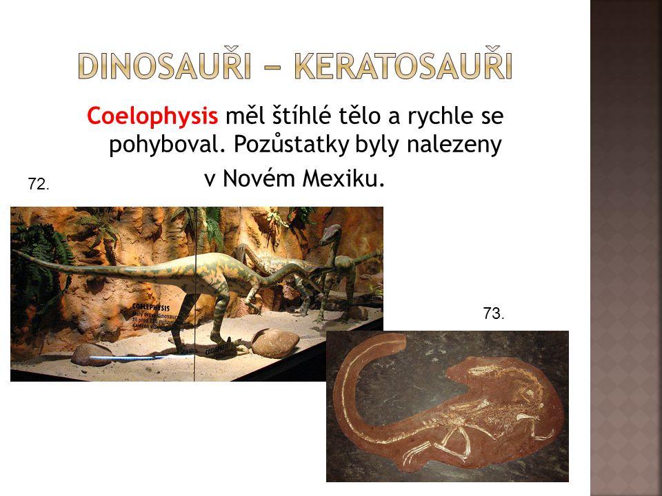 Coelophysis měl štíhlé tělo a rychle se pohyboval. Pozůstatky byly nalezeny v Novém Mexiku. 72. 73.