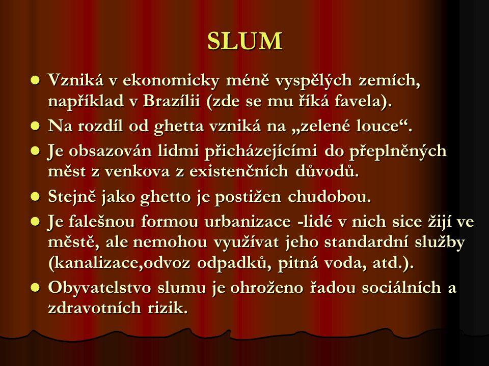 SLUM Vzniká v ekonomicky méně vyspělých zemích, například v Brazílii (zde se mu říká favela). Vzniká v ekonomicky méně vyspělých zemích, například v B