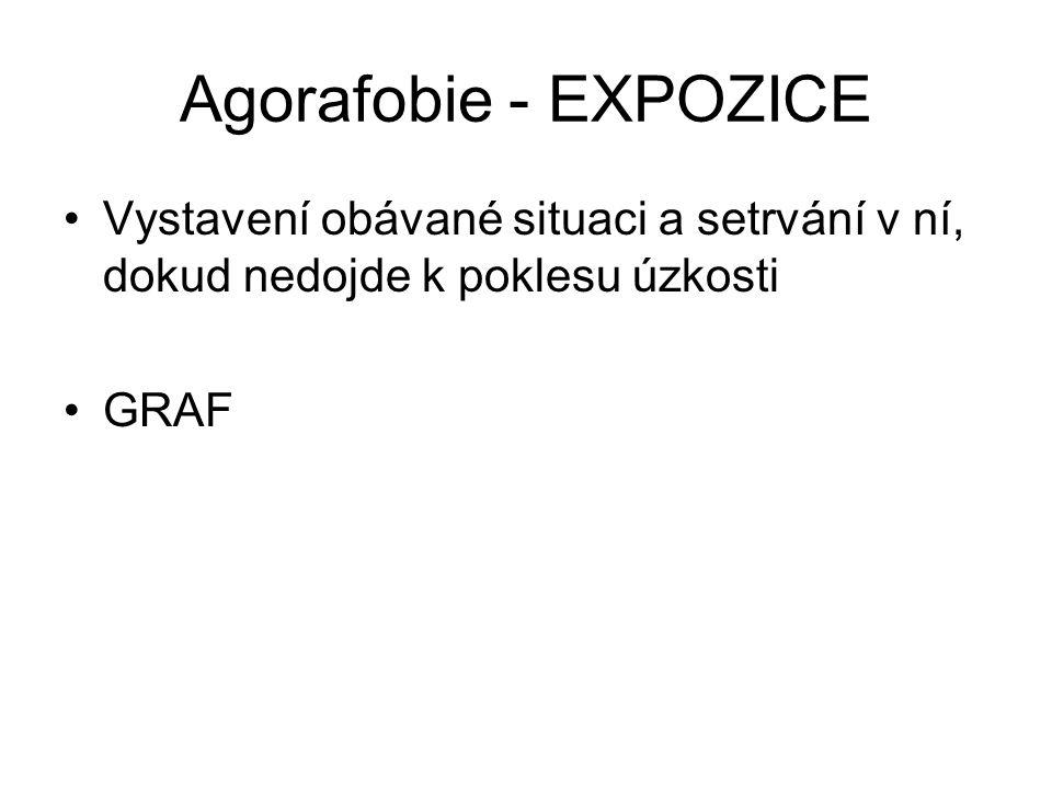 Agorafobie - EXPOZICE Vystavení obávané situaci a setrvání v ní, dokud nedojde k poklesu úzkosti GRAF