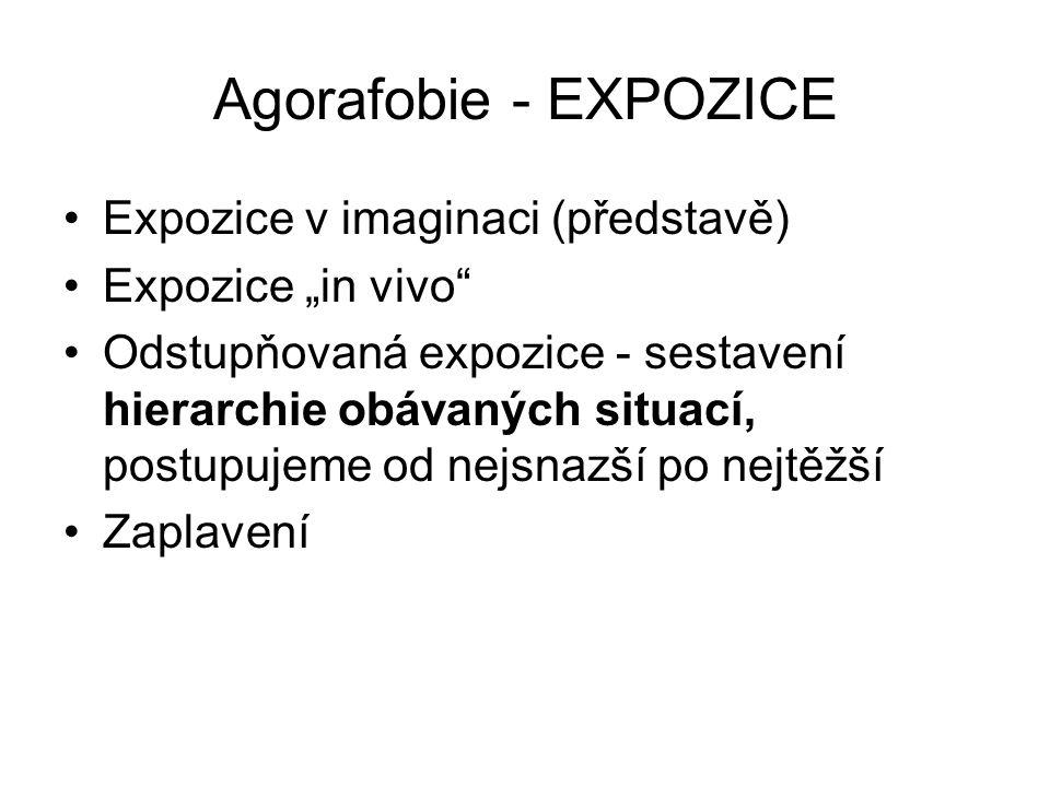 """Agorafobie - EXPOZICE Expozice v imaginaci (představě) Expozice """"in vivo"""" Odstupňovaná expozice - sestavení hierarchie obávaných situací, postupujeme"""