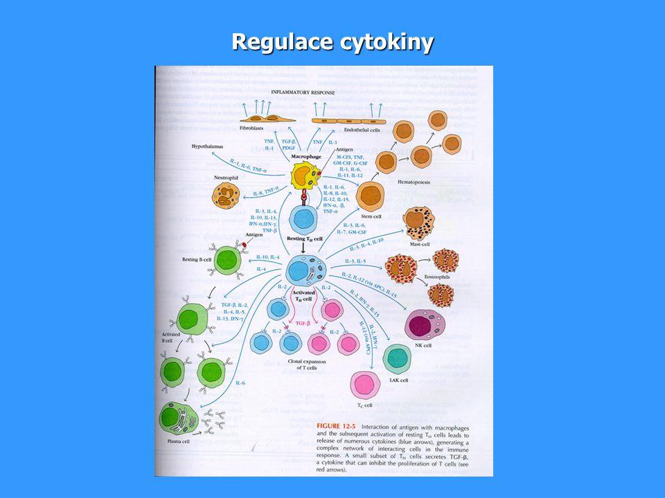 Regulace cytokiny