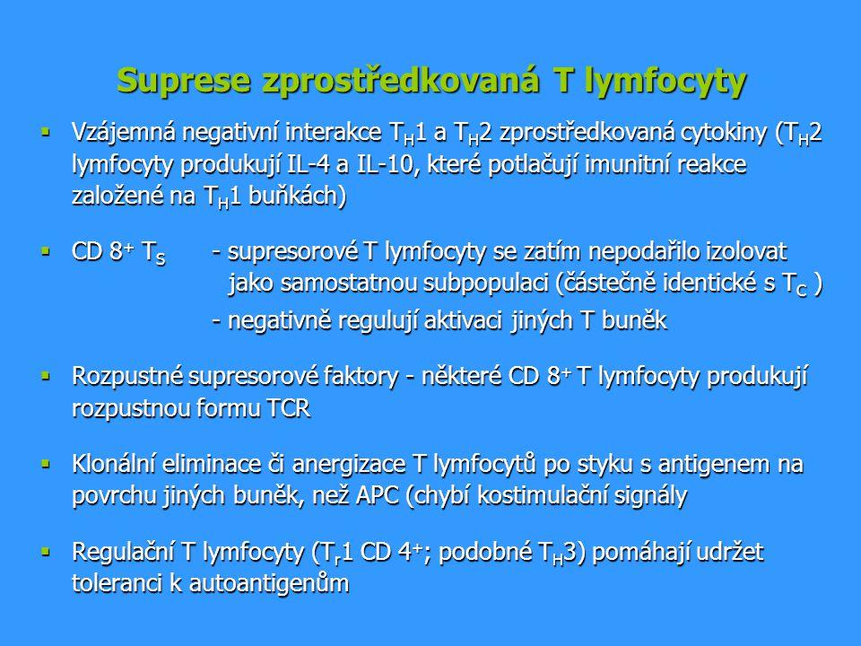 Suprese zprostředkovaná T lymfocyty  Vzájemná negativní interakce T H 1 a T H 2 zprostředkovaná cytokiny (T H 2 lymfocyty produkují IL-4 a IL-10, kte