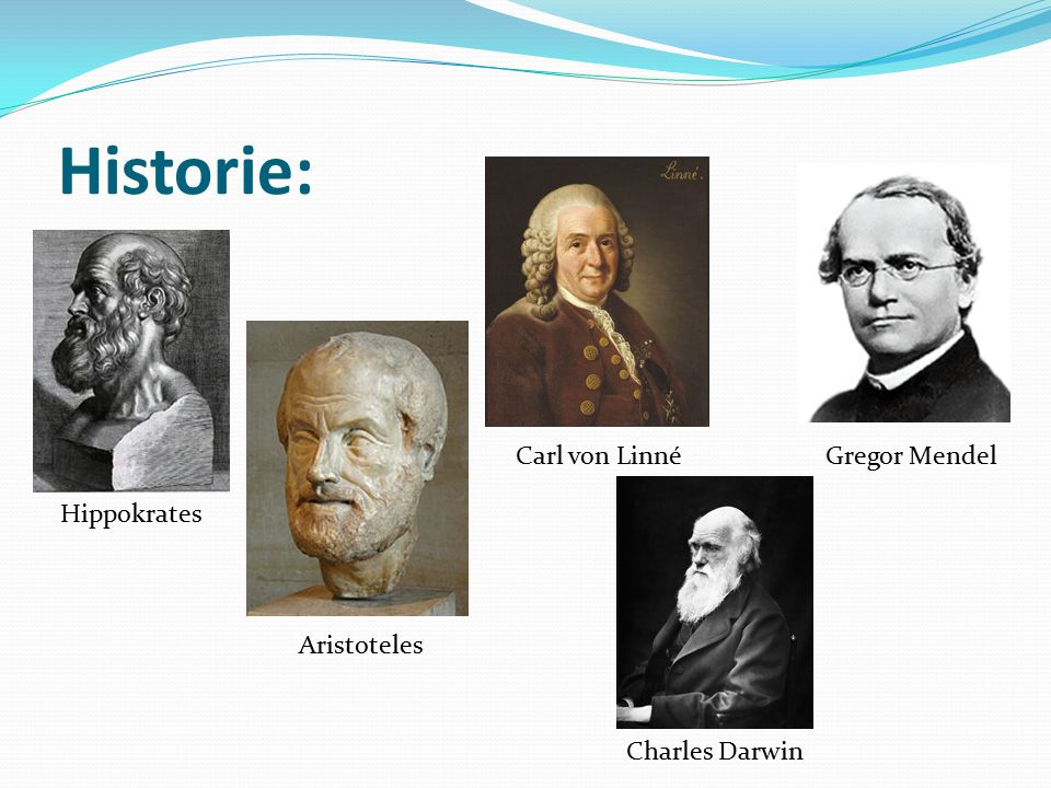 Historie: Aristoteles Hippokrates Carl von Linné Charles Darwin Gregor Mendel