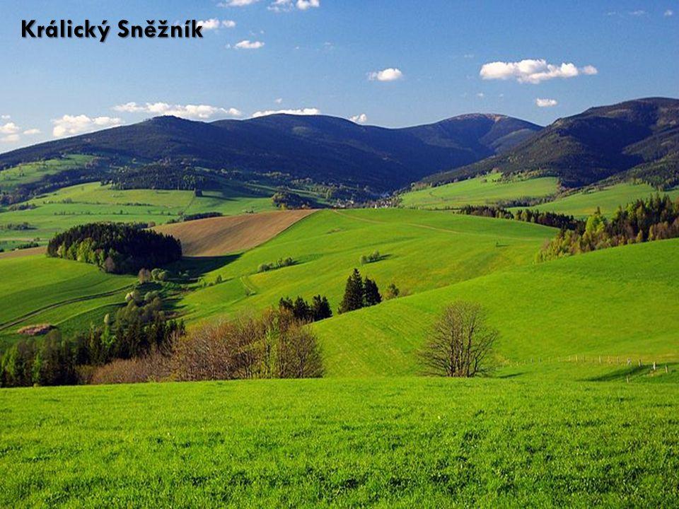 Česko je velmi rozmanitým teritoriem; nachází se na území čtyř geomorfologických provincií Česko je velmi rozmanitým teritoriem; nachází se na území čtyř geomorfologických provincií Zdaleka největší rozsah z nich má Česká vysočina, k níž náleží 3/4 území ČR (celé Čechy a západní část Moravy a Slezska až k Brnu a Ostravě) Zdaleka největší rozsah z nich má Česká vysočina, k níž náleží 3/4 území ČR (celé Čechy a západní část Moravy a Slezska až k Brnu a Ostravě) Jihovýchodní a východní část českého území patří k Západním Karpatům Jihovýchodní a východní část českého území patří k Západním Karpatům Zbylé dvě provincie zasahují pouze malou část českého území Zbylé dvě provincie zasahují pouze malou část českého území Na jihovýchodě je to Dolnomoravským úvalem Západopanonská pánev, na severovýchodě Opavskou pahorkatinou Středoevropská nížina Na jihovýchodě je to Dolnomoravským úvalem Západopanonská pánev, na severovýchodě Opavskou pahorkatinou Středoevropská nížina Provincie (řádově desetitisíce km²) se dále podrobněji člení na soustavy (někdy zvané též subprovincie), podsoustavy (někdy též oblasti) Provincie (řádově desetitisíce km²) se dále podrobněji člení na soustavy (někdy zvané též subprovincie), podsoustavy (někdy též oblasti) Geomorfologické členění území ČR - provincie
