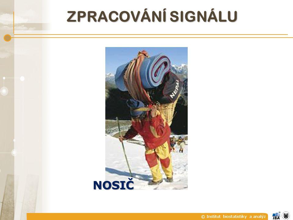 © Institut biostatistiky a analýz ZPRACOVÁNÍ SIGNÁLU