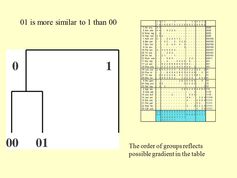 01 is more similar to 1 than 00 The order of groups reflects possible gradient in the table