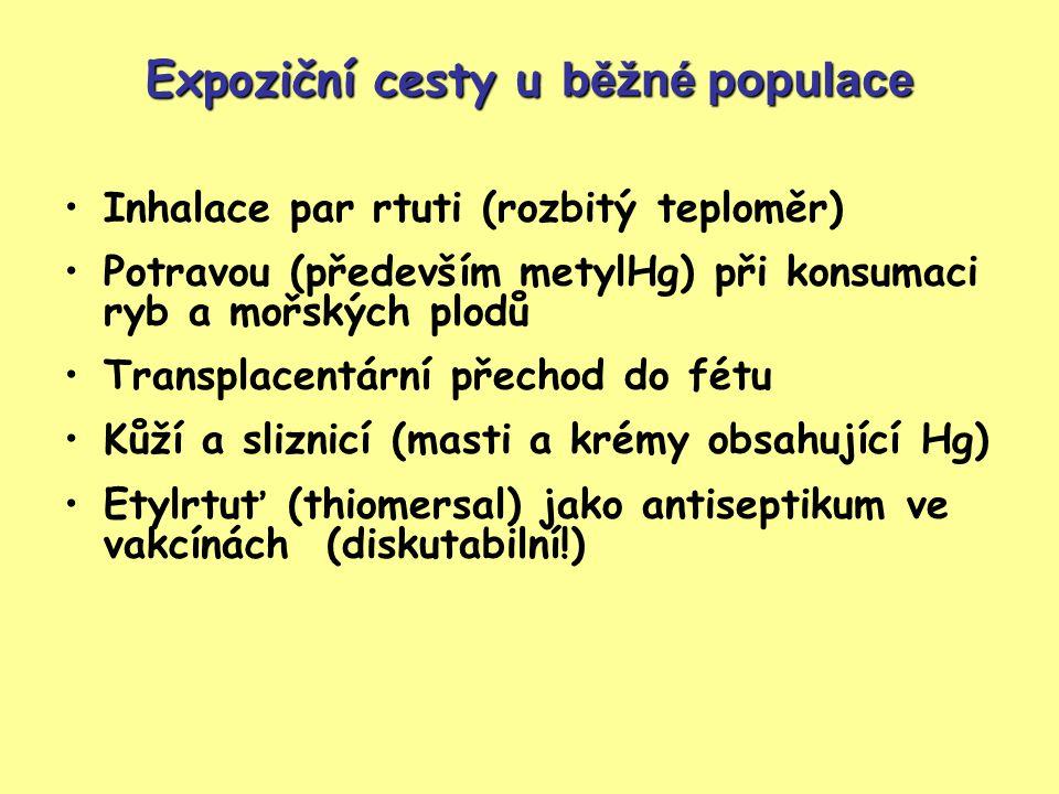 Expoziční cesty u běžné populace Inhalace par rtuti (rozbitý teploměr) Potravou (především metylHg) při konsumaci ryb a mořských plodů Transplacentární přechod do fétu Kůží a sliznicí (masti a krémy obsahující Hg) Etylrtuť (thiomersal) jako antiseptikum ve vakcínách (diskutabilní!)