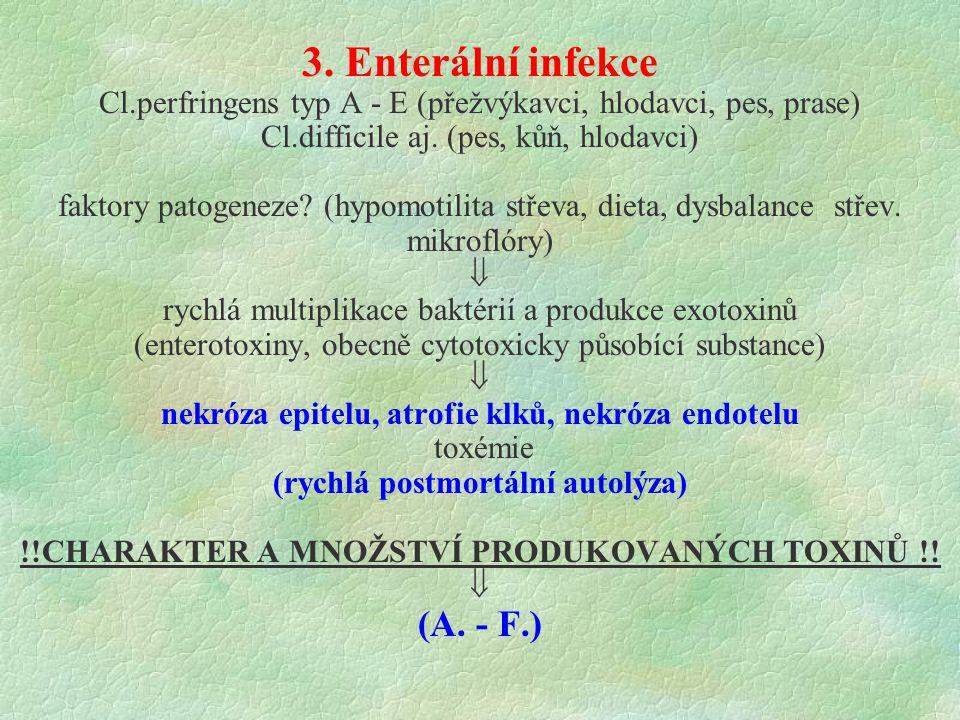 3. Enterální infekce Cl.perfringens typ A - E (přežvýkavci, hlodavci, pes, prase) Cl.difficile aj. (pes, kůň, hlodavci) faktory patogeneze? (hypomotil