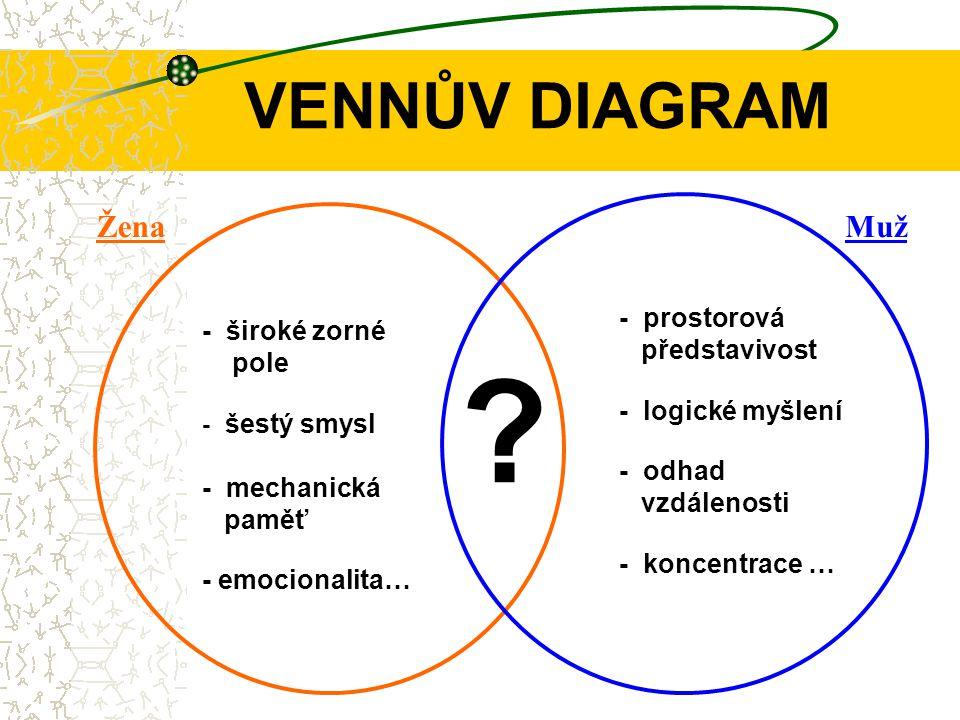 - prostorová představivost - logické myšlení - odhad vzdálenosti - koncentrace … - široké zorné pole - šestý smysl - mechanická paměť - emocionalita… .