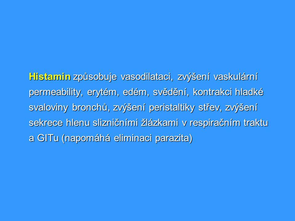 Histamin způsobuje vasodilataci, zvýšení vaskulární permeability, erytém, edém, svědění, kontrakci hladké svaloviny bronchů, zvýšení peristaltiky stře