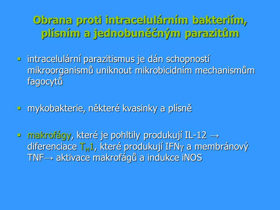 Obrana proti intracelulárním bakteriím, plísním a jednobuněčným parazitům  intracelulární parazitismus je dán schopností mikroorganismů uniknout mikr
