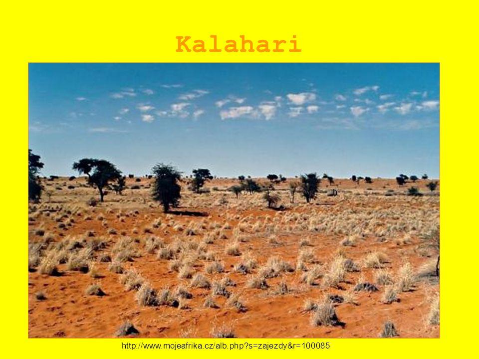 Kalahari http://www.mojeafrika.cz/alb.php?s=zajezdy&r=100085 h