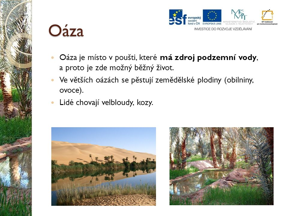 Oáza Oáza je místo v poušti, které má zdroj podzemní vody, a proto je zde možný běžný život. Ve větších oázách se pěstují zemědělské plodiny (obilniny