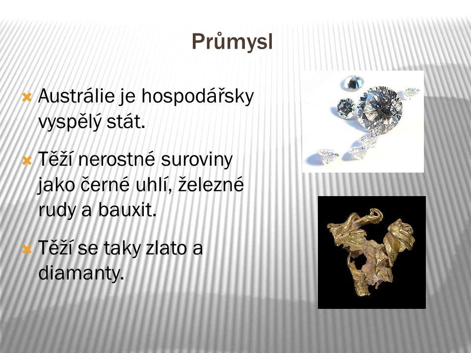 Průmysl  Austrálie je hospodářsky vyspělý stát.  Těží nerostné suroviny jako černé uhlí, železné rudy a bauxit.  Těží se taky zlato a diamanty.