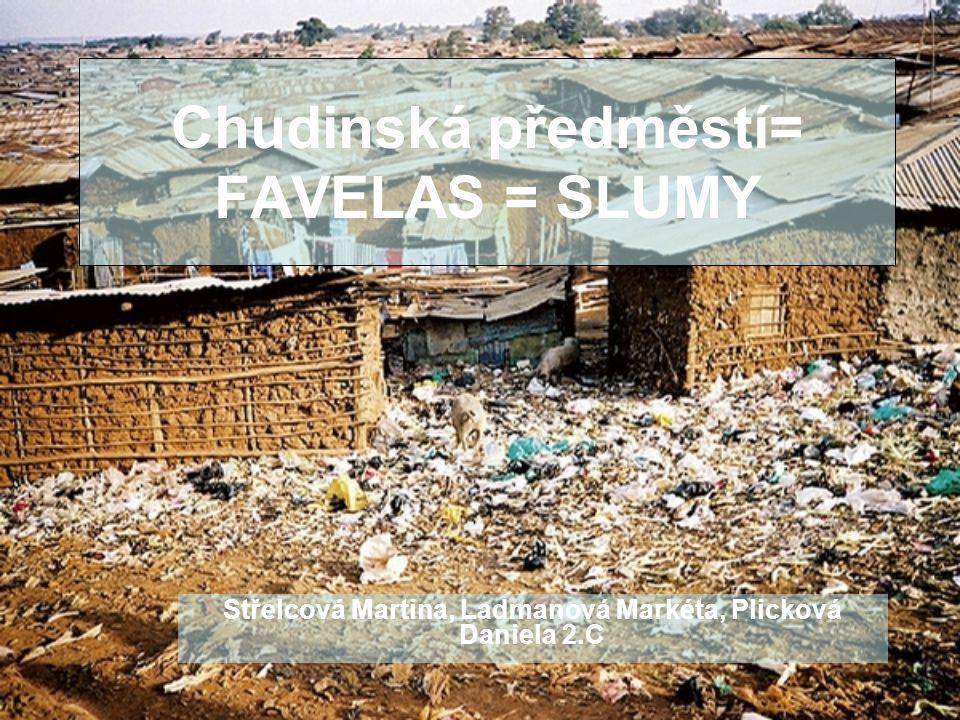 Osnova Zamyšlení nad životem (pro nás všechny) Peníze x Voda a chléb Něco málo k brazilským favelům Názorná ukázka- Slumdog Millionaire Naděje.