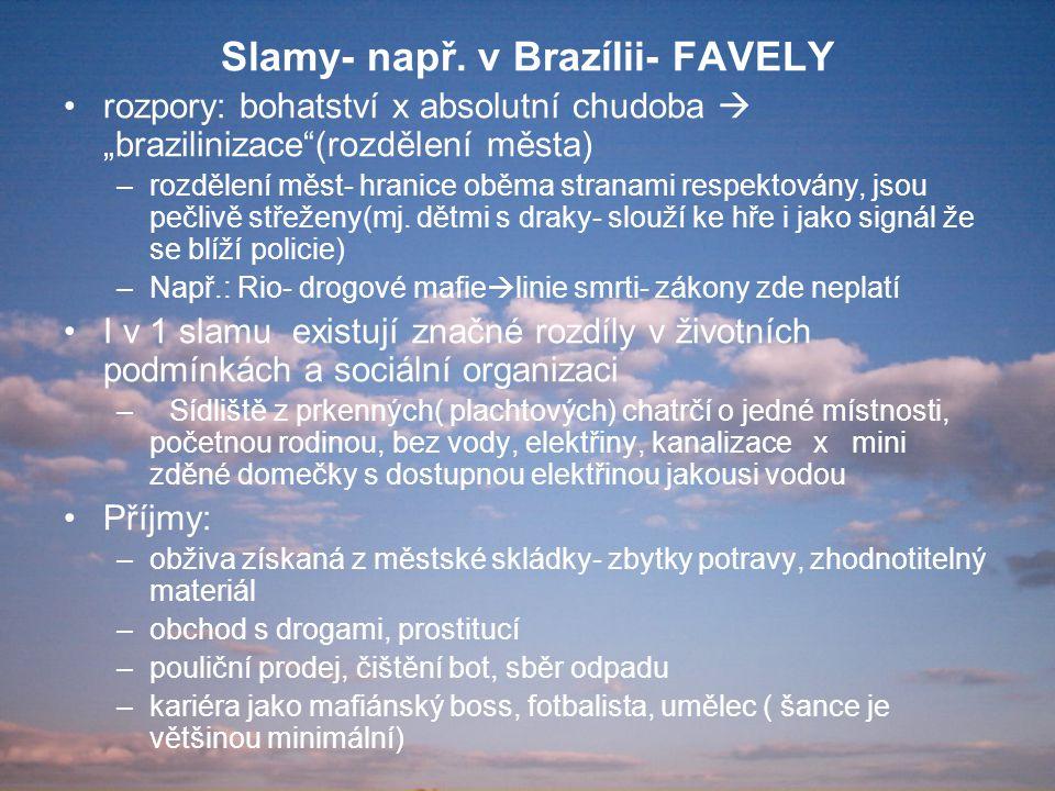 """Slamy- např. v Brazílii- FAVELY rozpory: bohatství x absolutní chudoba  """"brazilinizace""""(rozdělení města) –rozdělení měst- hranice oběma stranami resp"""