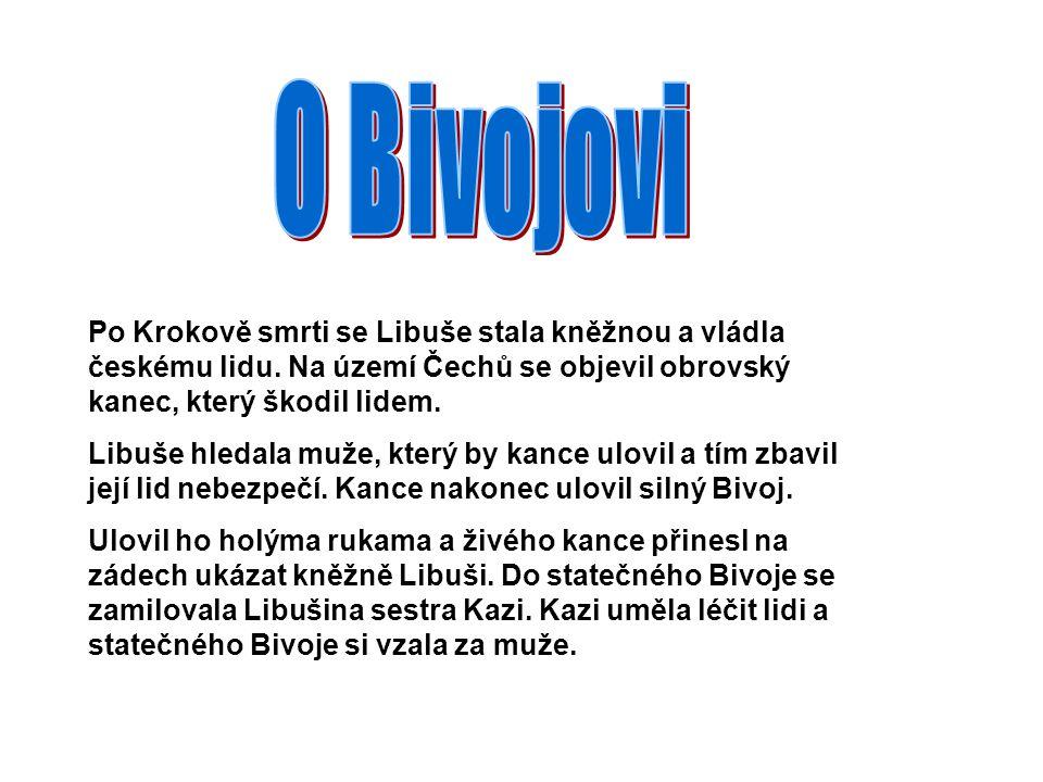 Po Krokově smrti se Libuše stala kněžnou a vládla českému lidu. Na území Čechů se objevil obrovský kanec, který škodil lidem. Libuše hledala muže, kte