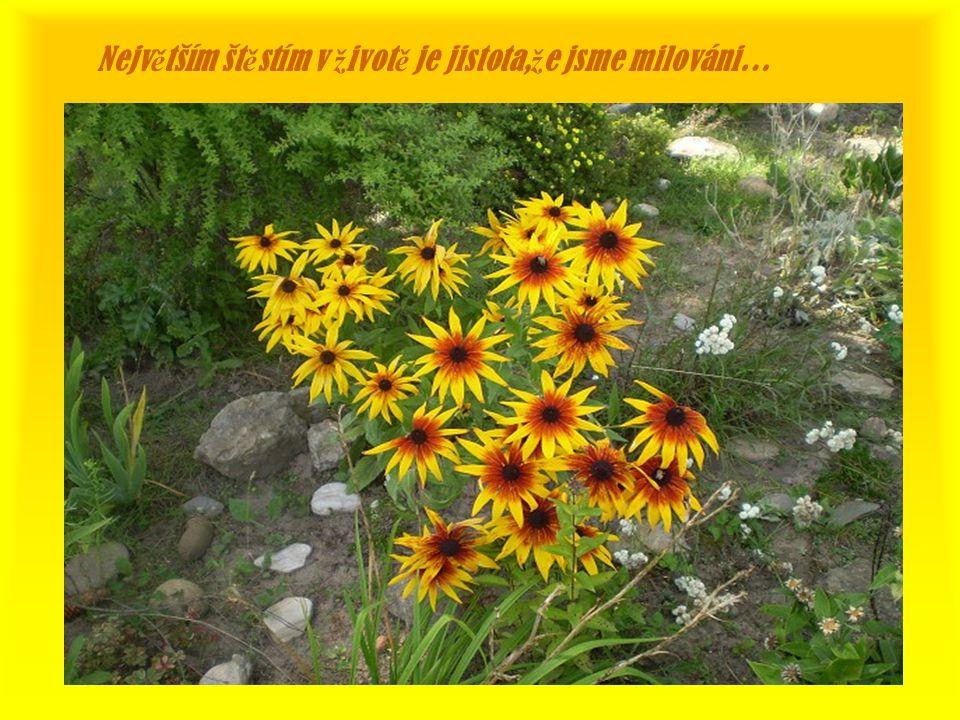 Št ě stí je rovnováha mezi tím,kdo jsme a co máme…