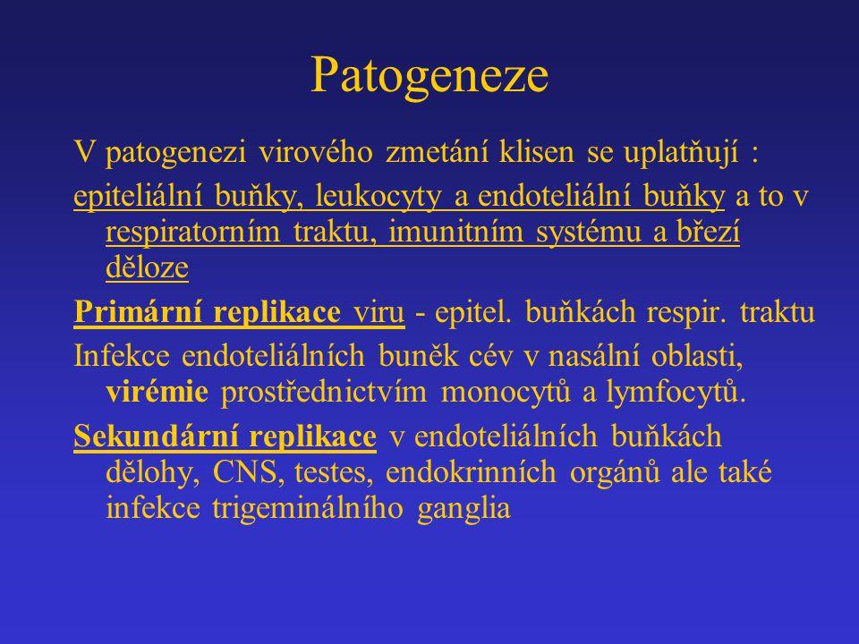 Patogeneze V patogenezi virového zmetání klisen se uplatňují : epiteliální buňky, leukocyty a endoteliální buňky a to v respiratorním traktu, imunitní