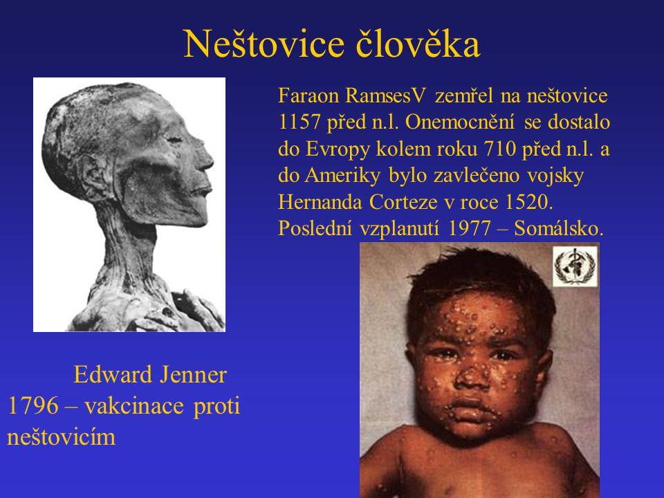 Faraon RamsesV zemřel na neštovice 1157 před n.l. Onemocnění se dostalo do Evropy kolem roku 710 před n.l. a do Ameriky bylo zavlečeno vojsky Hernanda