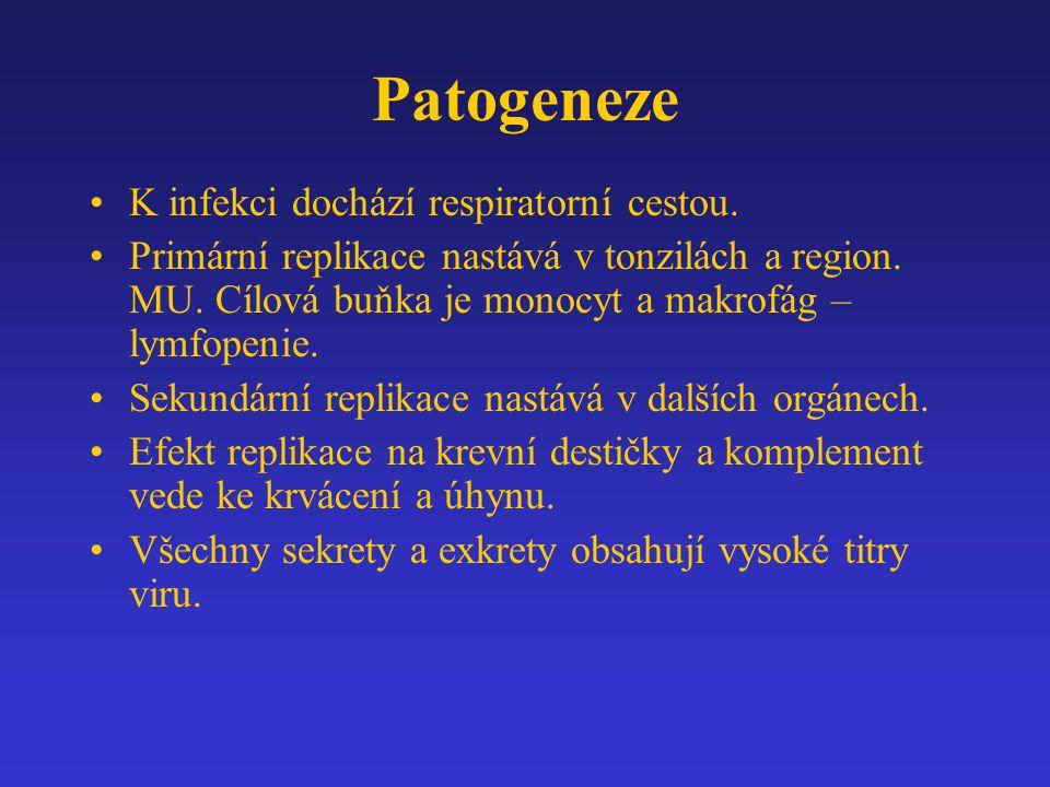 Patogeneze K infekci dochází respiratorní cestou. Primární replikace nastává v tonzilách a region. MU. Cílová buňka je monocyt a makrofág – lymfopenie