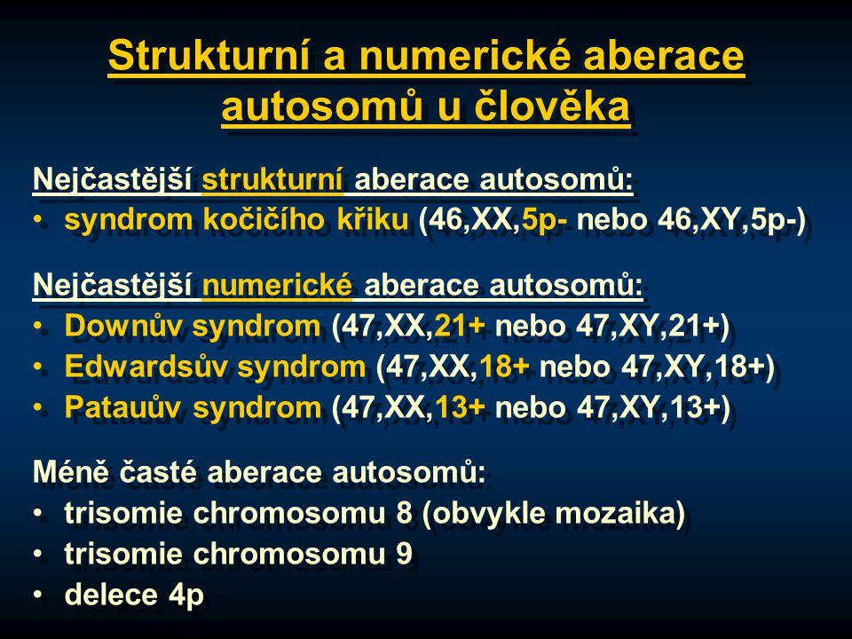 Strukturní a numerické aberace autosomů u člověka Nejčastější strukturní aberace autosomů: syndrom kočičího křiku (46,XX,5p- nebo 46,XY,5p-) Nejčastější numerické aberace autosomů: Downův syndrom (47,XX,21+ nebo 47,XY,21+) Edwardsův syndrom (47,XX,18+ nebo 47,XY,18+) Patauův syndrom (47,XX,13+ nebo 47,XY,13+) Méně časté aberace autosomů: trisomie chromosomu 8 (obvykle mozaika) trisomie chromosomu 9 delece 4p Nejčastější strukturní aberace autosomů: syndrom kočičího křiku (46,XX,5p- nebo 46,XY,5p-) Nejčastější numerické aberace autosomů: Downův syndrom (47,XX,21+ nebo 47,XY,21+) Edwardsův syndrom (47,XX,18+ nebo 47,XY,18+) Patauův syndrom (47,XX,13+ nebo 47,XY,13+) Méně časté aberace autosomů: trisomie chromosomu 8 (obvykle mozaika) trisomie chromosomu 9 delece 4p